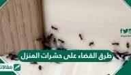 طرق القضاء على حشرات المنزل