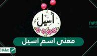 معنى اسم اسيل Aseel وصفات حاملة الاسم وشخصيتها
