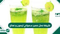 طريقة عمل عصير سموثي ليمون ونعناع