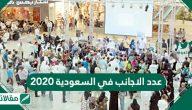كم عدد الاجانب في السعودية 2020