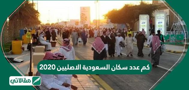 كم عدد سكان السعودية الاصليين 2020