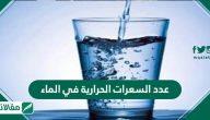 عدد السعرات الحرارية في الماء
