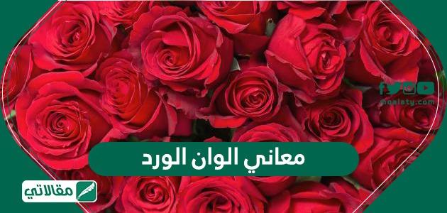 معاني الوان الورد مقالاتي