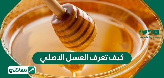 كيف تعرف العسل الاصلي .. مواصفات العسل الأصلي