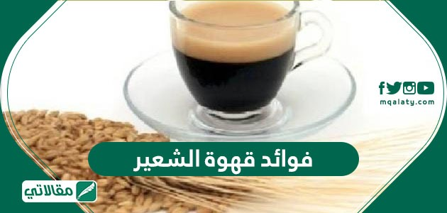 فوائد قهوة الشعير وكيفية تحضير قهوة الشعير