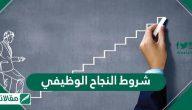 شروط النجاح الوظيفي ..اهمية النجاح الوظيفي