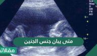 متى يبان جنس الجنين .. وسائل معرفة نوع الجنين