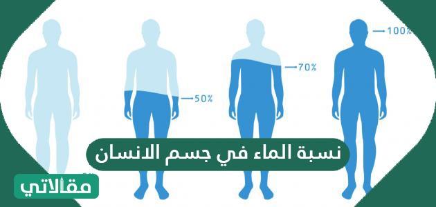 نسبة الماء في جسم الانسان .. أين يوجد الماء في جسم الإنسان