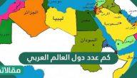 كم عدد دول العالم العربي … وما أصل اللغة العربية