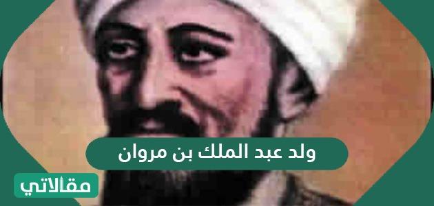 متى ولد عبد الملك بن مروان .. خلافة عبد الملك بن مروان