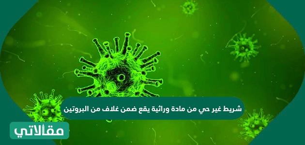 شريط غير حي من مادة وراثية يقع ضمن غلاف من البروتين