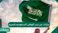 عبارات عن حب الوطن السعوديه قصيره