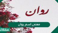 معنى اسم روان Rawan وشخصيتها مع الأسرار