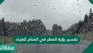 تفسير رؤية المطر في المنام للعزباء