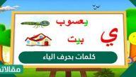 كلمات تحتوي على حرف الياء في قاموس اللغة العربية