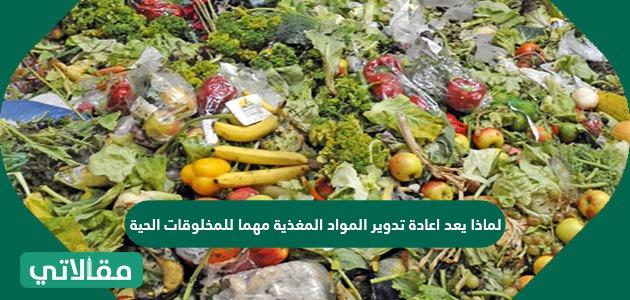 لماذا يعد اعادة تدوير المواد المغذية مهما للمخلوقات الحية