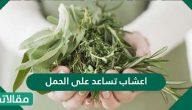 اعشاب تساعد على الحمل بسرعة وتنشيط المبايض