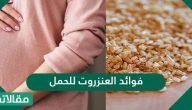 فوائد العنزروت للحمل وطريقة استخدامه  لتنظيف الرحم