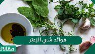 فوائد شاي الزعتر للدورة الشهرية