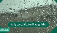 لماذا يوجد للمطر أكثر من رائحة