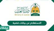 الاستعلام عن بيانات قضية في السعودية