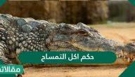 حكم اكل التمساح وآراء الفقهاء حوله
