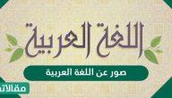 صور عن اللغة العربية جميلة ومعبرة