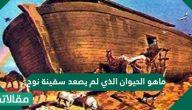 ما هو الحيوان الذي لم يصعد سفينة نوح عليه السلام