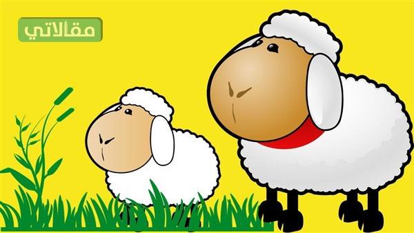 خروف العيد كرتون