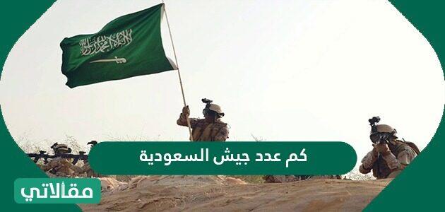كم عدد جيش السعودية وما ترتيب الجيش السعودي بين الجيوش العالمية