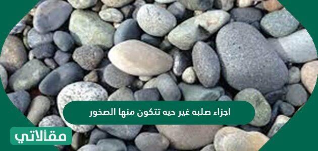 أجزاء صلبه غير حيه تتكون منها الصخور