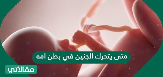 متى يتحرك الجنين في بطن أمه