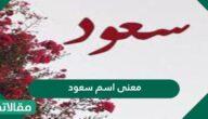 معنى اسم سعود وصفات من يحمل الاسم وحكم التسمية به