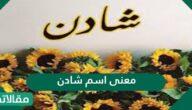 معنى اسم شادن في القرآن الكريم وحكم التسمي به
