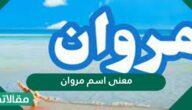 معنى اسم مروان في اللغة العربية وصفات حاملة الاسم