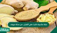 نبتة عشبية ذكرت في القرآن من ستة حروف