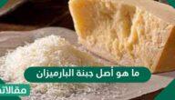 ما هو أصل جبنة البارميزان