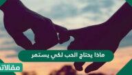 ماذا يحتاج الحب لكي يستمر