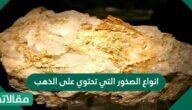 انواع الصخور التي تحتوي على الذهب
