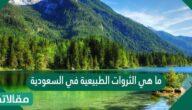 ما هي الثروات الطبيعية في السعودية