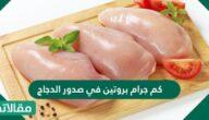 كم جرام بروتين في صدور الدجاج